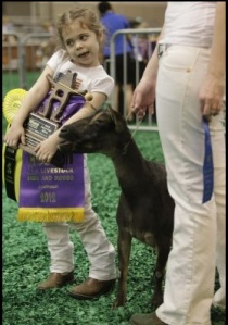 Grand Champion Kid. Image by Melissa Phillip. Houston Chronicle