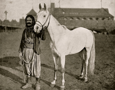 Bedouin's Prize Steed. 1893. World's Columbian Exposition. (Public domain image:commons.wikimedia.org))