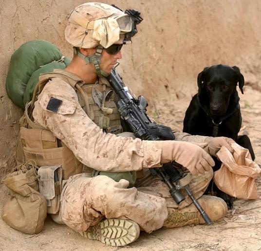 US Marines- Evans and Allie.  (USMC photo.Bellegarde/ US public domain. Military/Defense dept.100221-M-5645B-009/ Commons.wikimedia.org)