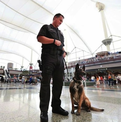 CaninNnikos and his person  at DIA (canines on duty and mountains out the windows - does it get any better?)Denver. Nnikos at the airport. (FB/denverinternationalairport)