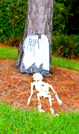 Skeleton Halloween yard decoration