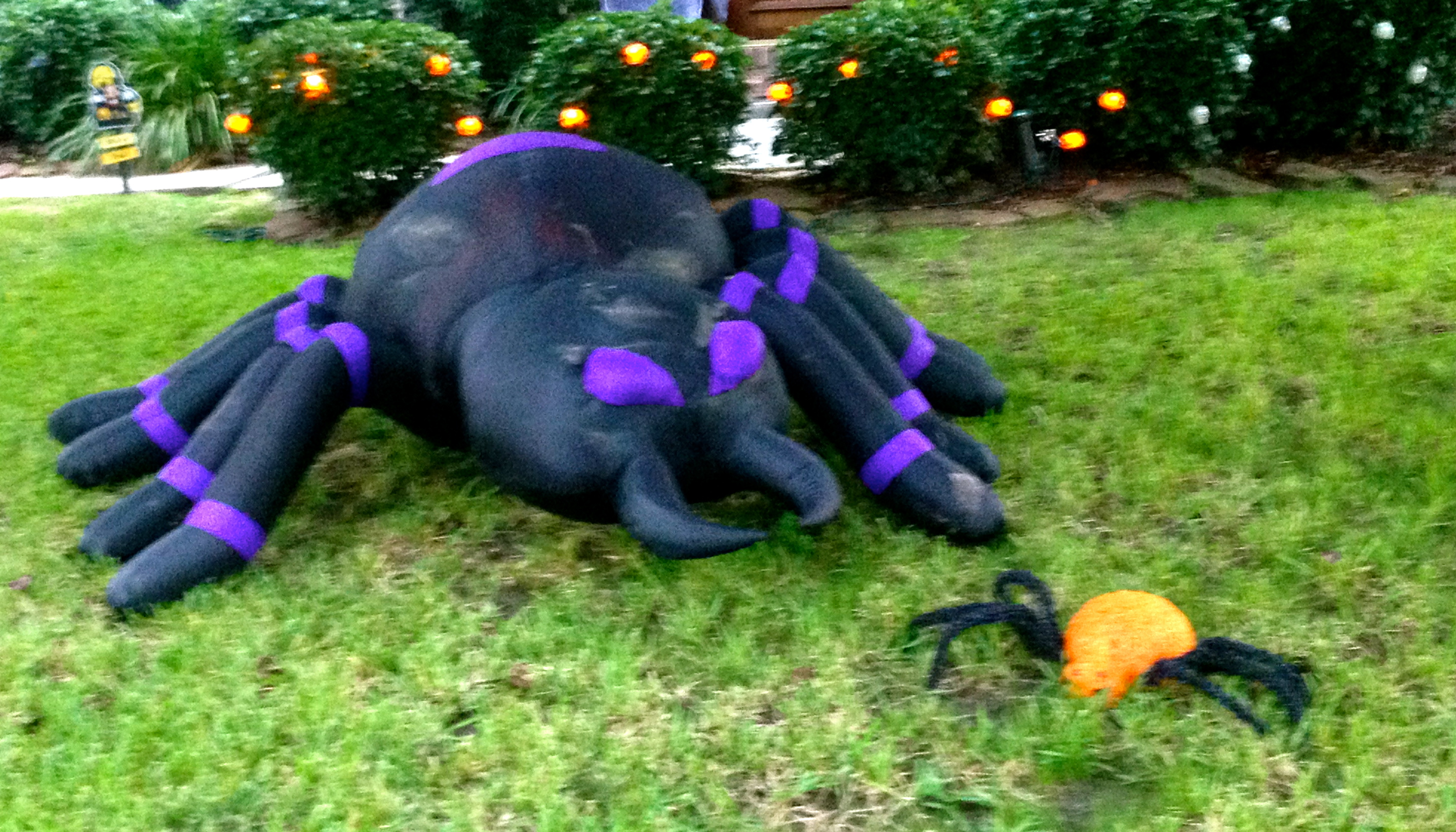 urban rumors. halloween revels. all revealed. | philosopher mouse of