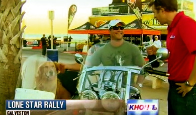 Dog, Duke, in sidecar at Lone Star Motorcycle Rally. (khou.com screenshot)