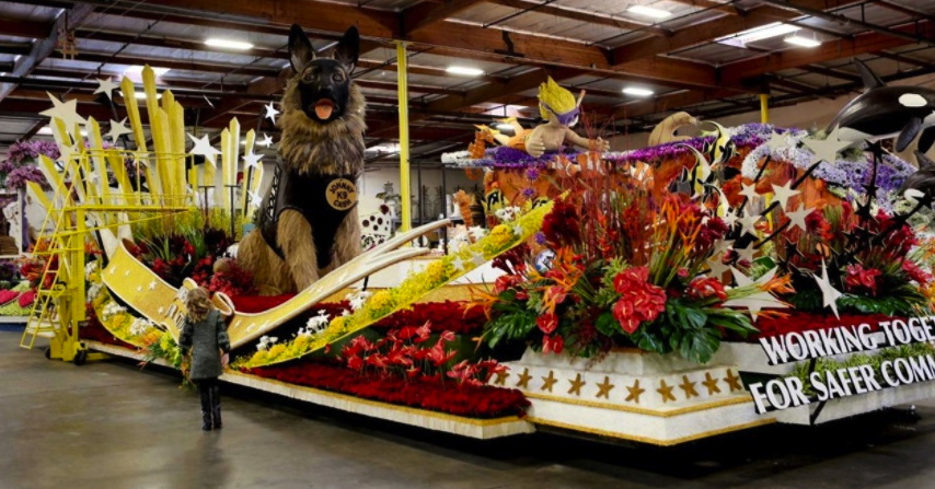 rose parade floats dawgs philosopher mouse of the hedge. Black Bedroom Furniture Sets. Home Design Ideas