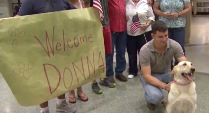 Well earned homecoming. Retired military dog Donna greeted by friends at Hobby Airport (Screenshot image: Click2houston.com)