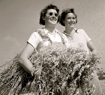 Harvest, 1942.Devon England/ Wilderman Shaw?/ Imperial War Museum/PD:reprod of PD photo/pub.date/Commons.wikimedia.org