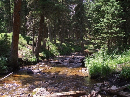 Fall River, Rocky Mountain National Park /Footwarrior /Commons.wikimedia.org)