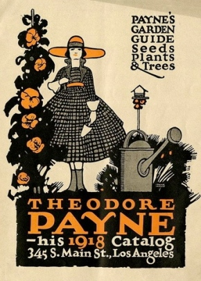 Vintage Seed catalogue.Theodore Payne/CA Hisotrical Society/USPD:pub.date/Commons.wikimedia.org)