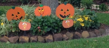 Pumpkins in yard. all rights reserved. copyrighted. No permissions granted