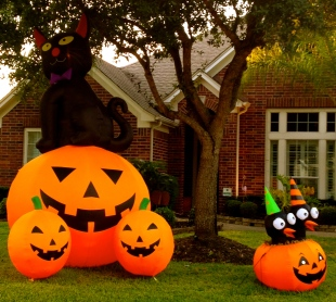 Halloween inflated yard pumpkins. all rights reserved. no permissions granted. copyrighted
