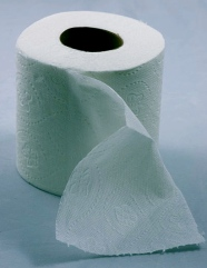 toilet paper roll. Coetzee/US PD/Commons.wikimedia.org)
