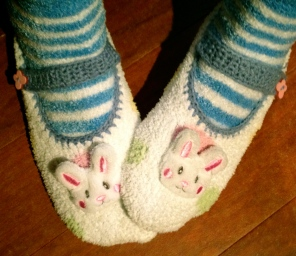 bunny slippers all rights reserved. No permissions granted. Copy righted
