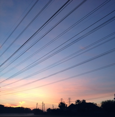 Sunrise lined by power lines.