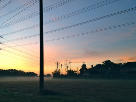 dawn with fog. no permissions granted. all rights reserved. Copyrighted