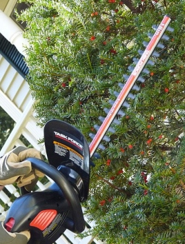 Hedge trimmers. (R.Reid/Commons.wikimedia.org)