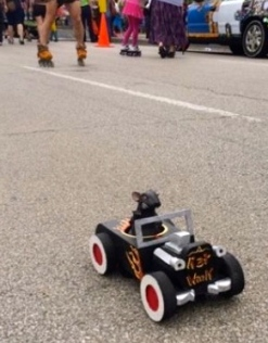 remote control art car driven by a mouse. (2015 Houston Art Car Parade/Screenshot.khou.com)