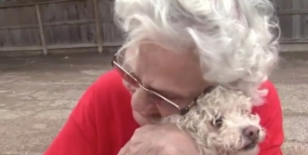 Big hug. TInkerbell safe. Amy Davis report. screenshot.click2houston.com