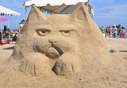 Large cat glaring. (2015 AIA Sandcastle Competition/ Screenshot: abc13.com:hobbies)