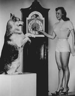Rin TIn TIn and Actress Jana Lund.Daylight Savings Time promo./ABC (1954-1959 (USPD.pub.date/Commons.wikimedia.org)