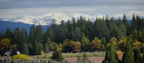 Mountains. (Screenshot. Gracepatriotswines.com)