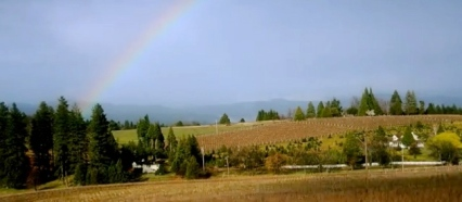 rainbow over vineyard. (Screenshot.gracepatriotwines.com)