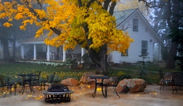 Walnut tree in front of historic Irving Ranch House (1865) (Screenshot. gracepatriotswine.com)
