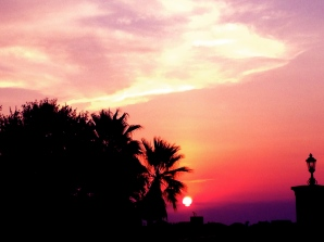 NO permissions granted for this sunset with palm trees. ALL rights reserved. Copyrighted