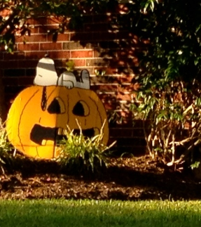 NO permissions Snoopy asleep on grinning Halloween pumpkin. ALL rights reserved. Copyrighted