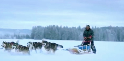 Director and sled dogs of Quebec's Sacre-Coeur. (You Tube.DJI)