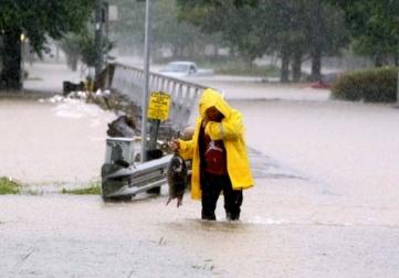 armadillo rescue by abc:ktrk reporter.(Steve Gonzales/Hou.chron/chron.com)