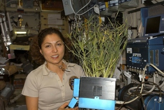 woman with plant. International Space station. Anousheh Ansari with plant grown in Zvezda Serv. Module.(NASA.spaceflight.nasa.gov/USPD/Commons.wikimedia.org)