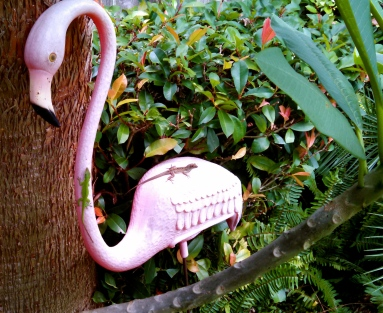 ALL rights reserved. A pink plastic flamingo (Copyrighted)carrying two lizards NO permissions granted