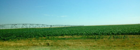 Robotic irrigation machines watering a crop in West Texas(ALL rights reserved. NO permissions granted. Copyrighted)