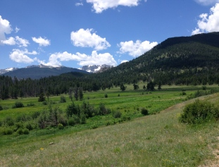 Mountains and meadows in Rockies. ALL rights reserved. NO permissions granted. Copyrighted