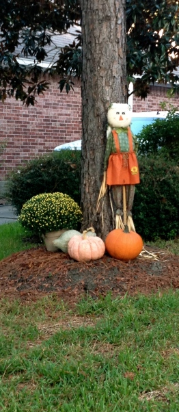 Halloween scarecrow tied to tree - with pumpkins. ALL rights reserved. NO permissions granted. Copyrighted