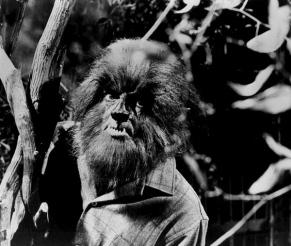 "Werewolf frome ""Dark Shadows"" TV show-1969. Publicity photo (USPD. pub.date/Commons.wikimedia.org)"