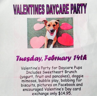 Invitation to Doggy Valentines Party with all the elaborate activities and treats described. ALL rights reserved. Copyrighted. NO permissions granted