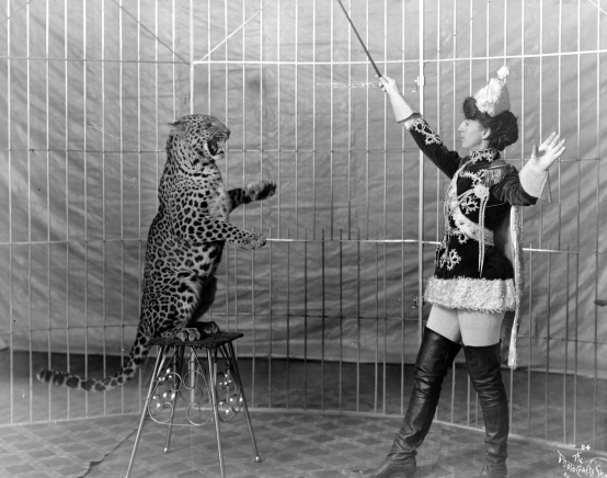 Woman at work. Animal trainer on tall boots and leopard. 1906.(LOC/USPD. pub.date/Commons.wikimedia.org)