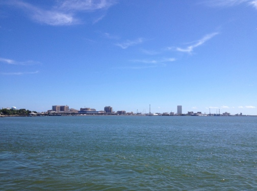 Galveston Island from back/bay side. ©ALL rights reserved. copyrighted. NO permissions granted