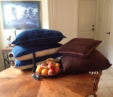 Still life with fruit, objects and dog beds. Image © ALL rights reserved, no permissions granted, copyrighted