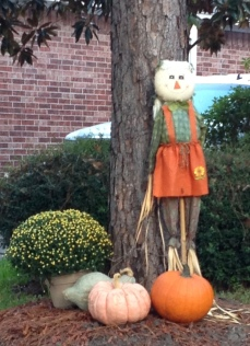 Halloween yard decoration scarecrow. Image ©. All rights reserved. Copyrighted. NO permissions granted