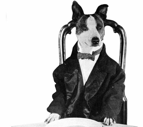 Dog in suit sitting at table, (Motion Picture News, 1921, Century films, Universal pictures (USPD pub.date, artist life/Commons.wikimedia.org)