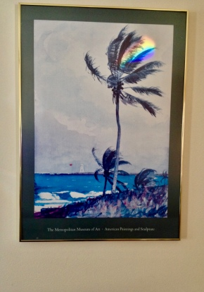Framed print of palm tree with rainbow streaked across it. (Image:© all rights reserved, copyrighted, NO permissions granted)