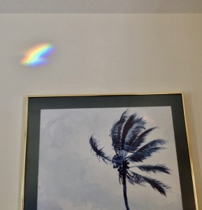 """Rainbow arching over picture's waving palm. """"No, chroma, don't go. Hang around and glow."""" Frantic palm obviously fears the fade.(Image:©)"""