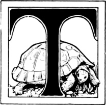 Turtle from fairy tales of India, 1892. Batten, ill. (USPD. pub.date, artist life/Commons.wikimedia.org)