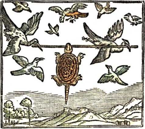 Turtle flying with birds. 1892 Indian Fairy Tales, Batten (USDPD. pub.date, artist life/Commons.wikimedia.org)