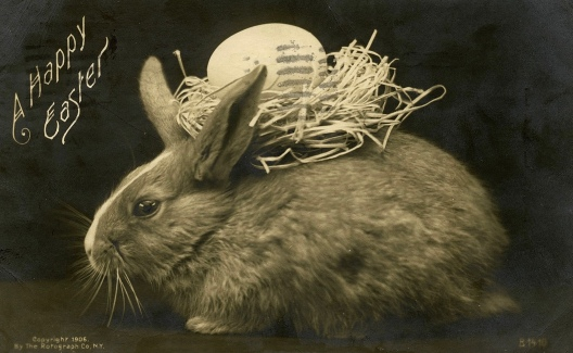 Real bunny with Easter egg in a nest on his back. 1906 postcard. (Special Collections Toronto Pub.Lib. Canada/USPD, pub.date, artist life/Commons.wikimedia.org)