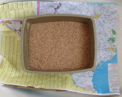 Paper map of Texas under cat litter box - Oh it's clean, don't worry. ( Image Copyrighted, NO permissions granted, All rights reserved.)