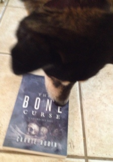 dog sniffing book. (© Image ALL rights reserved, copyrighted, NO permissions granted)