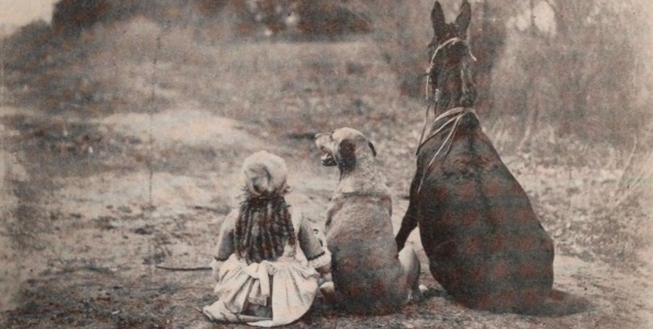 Best Friends- girl, dog, mule Maud (1921 Mary Pickford film promo shot/Exhibitors Herald/USPD pub.date, aretist life/Commons.wikimedia.org)